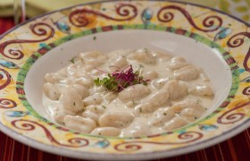 Prima-Pasta-Food--61